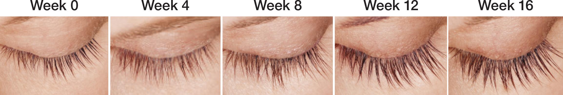 Week0-16